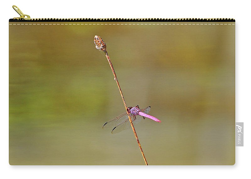 Dragonfly Carry-all Pouch featuring the photograph Roseate Skimmer by Al Powell Photography USA