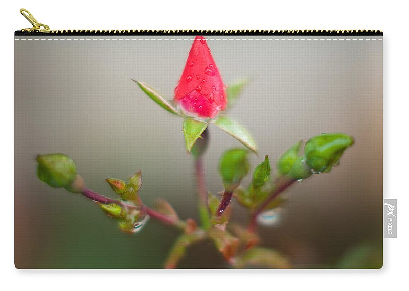 Rosebud Carry-all Pouch featuring the photograph Rosebud by Greg Nyquist