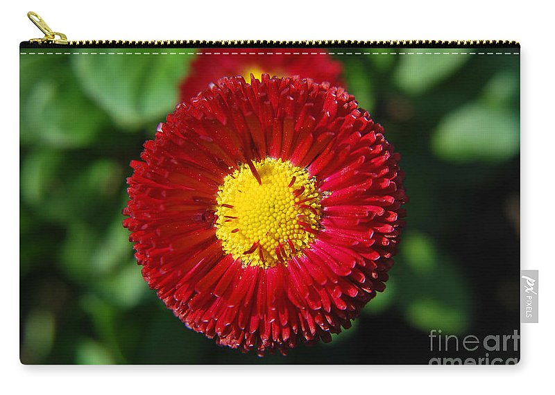 Yhun Suarez Carry-all Pouch featuring the photograph Round Red Flower by Yhun Suarez