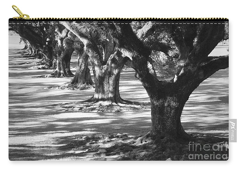 Oaks Carry-all Pouch featuring the photograph Row Of Oaks - Black And White by Carol Groenen