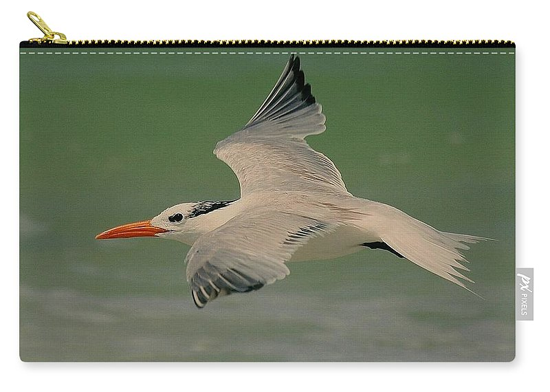 Terns Carry-all Pouch featuring the photograph Royal Flight by Myrna Bradshaw
