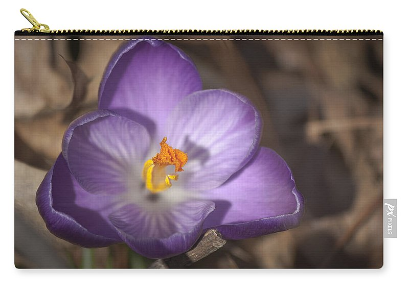 Crocus Carry-all Pouch featuring the photograph Royalty 2 by Teresa Mucha