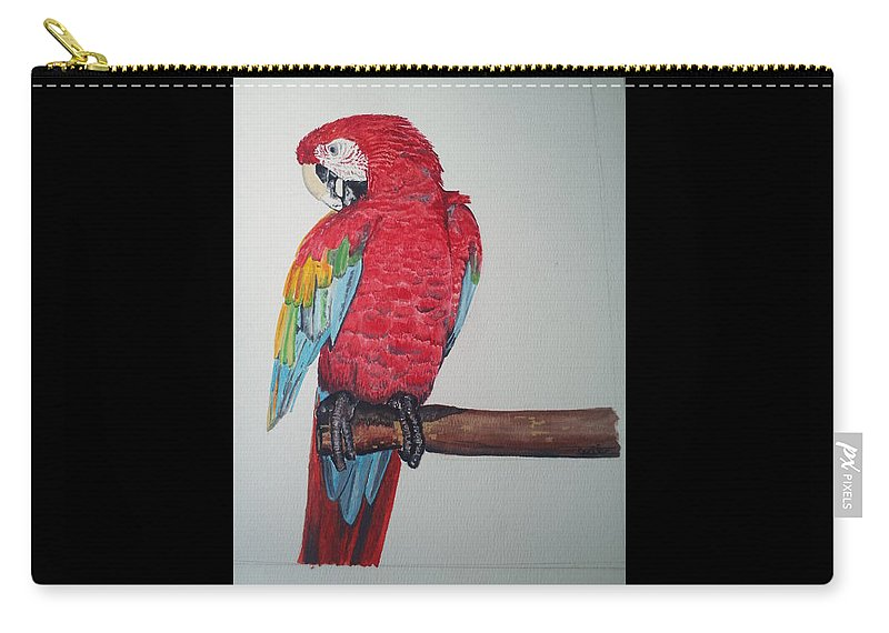 Macaw Carry-all Pouch featuring the painting Ruby by John Cecil Smith