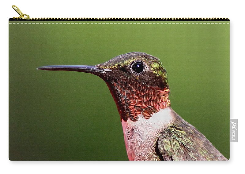Hummingbird Carry-all Pouch featuring the Ruby-throated Hummingbird - Macho Man by Travis Truelove