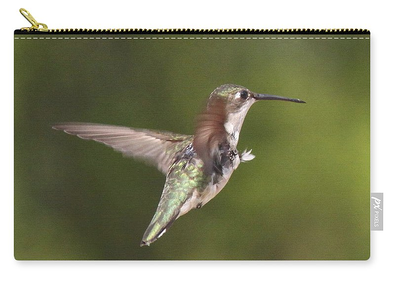 Hummingbird Carry-all Pouch featuring the photograph Ruby-throated Hummingbird - Twirling by Travis Truelove