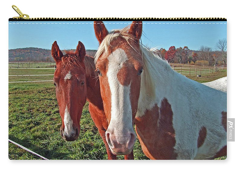 Horses Carry-all Pouch featuring the photograph Ruff 'n Reddy by S Paul Sahm