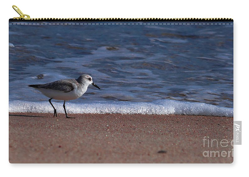 Run Carry-all Pouch featuring the photograph Run By The Sea by Scott Hervieux