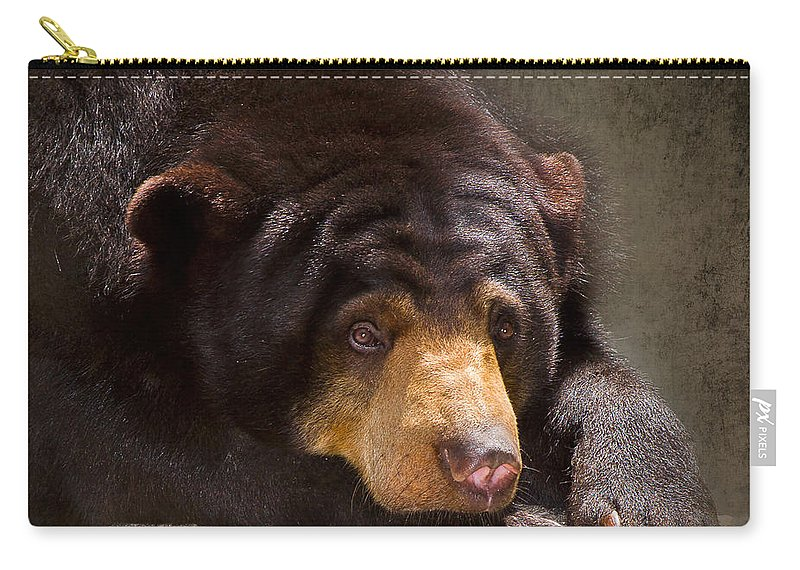 Sun Bear Carry-all Pouch featuring the photograph Sad Sun Bear by Louise Heusinkveld