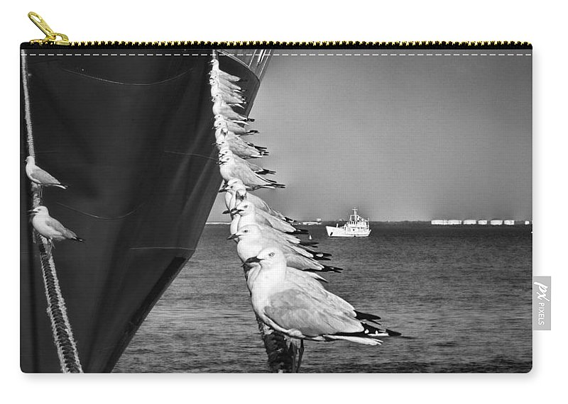Seagulls Carry-all Pouch featuring the photograph Sailors by Douglas Barnard