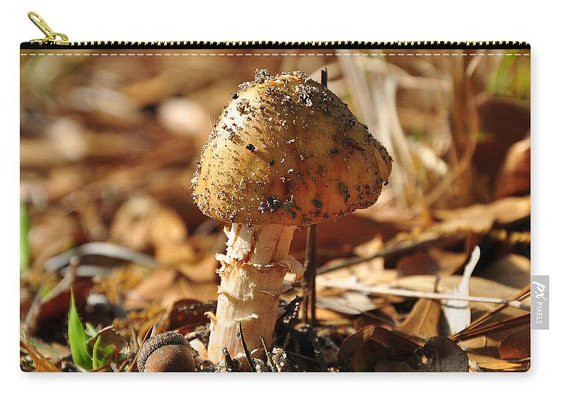 Mushroom Carry-all Pouch featuring the photograph Sandy Shroom by Al Powell Photography USA
