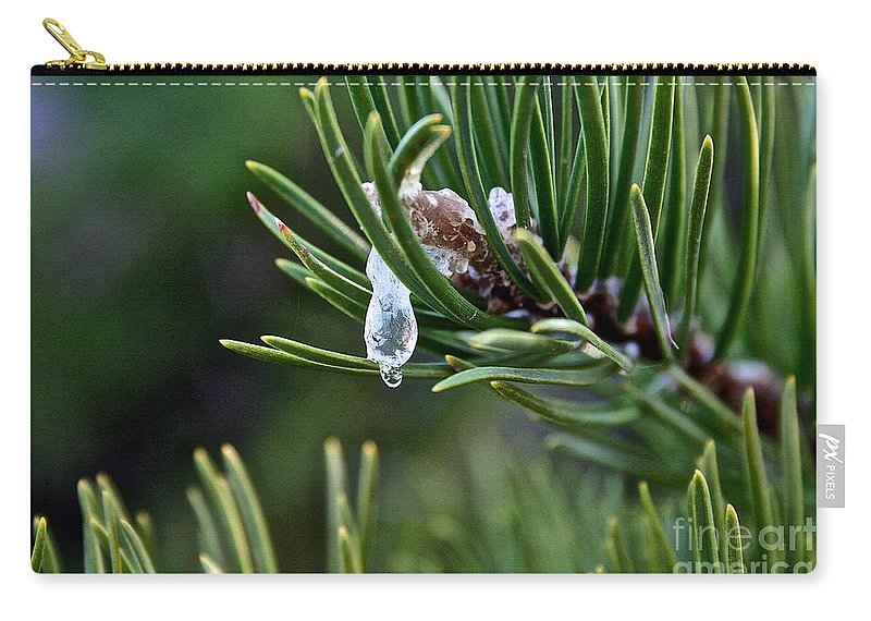 Outdoors Carry-all Pouch featuring the photograph Sap by Susan Herber
