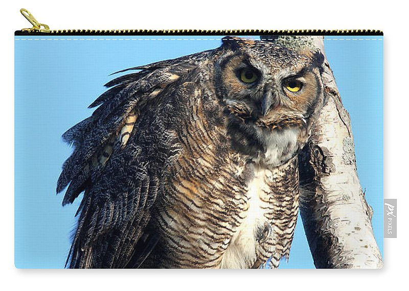 Doug Lloyd Carry-all Pouch featuring the photograph Say What by Doug Lloyd