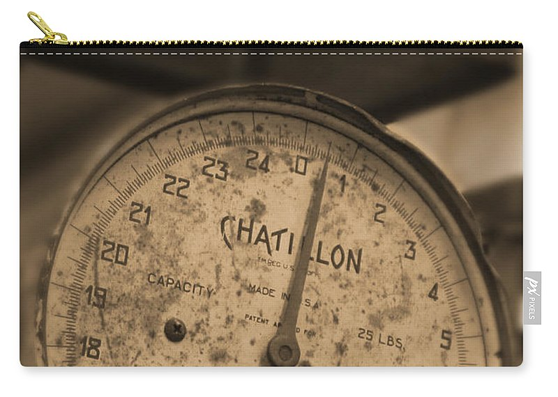 Scale Carry-all Pouch featuring the photograph Scale by Mike McGlothlen