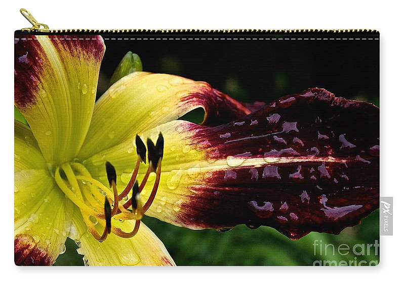 Floral Carry-all Pouch featuring the photograph Scarlet Pimpernel by Susan Herber