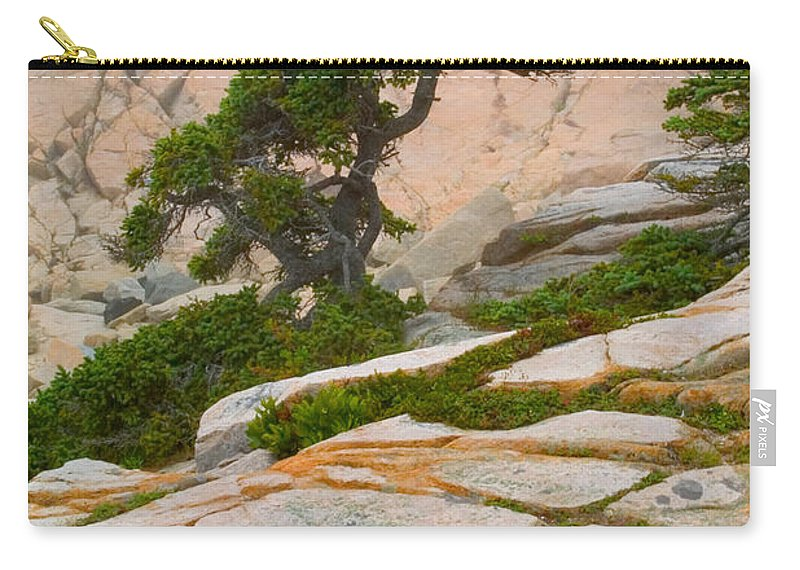 Pitch Pine Carry-all Pouch featuring the photograph Schoodic Cliffs by Brent L Ander