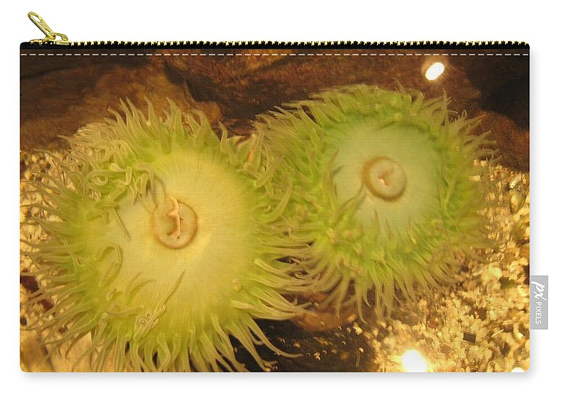 Sea Creature Carry-all Pouch featuring the photograph Sea Anemone by Sonali Gangane