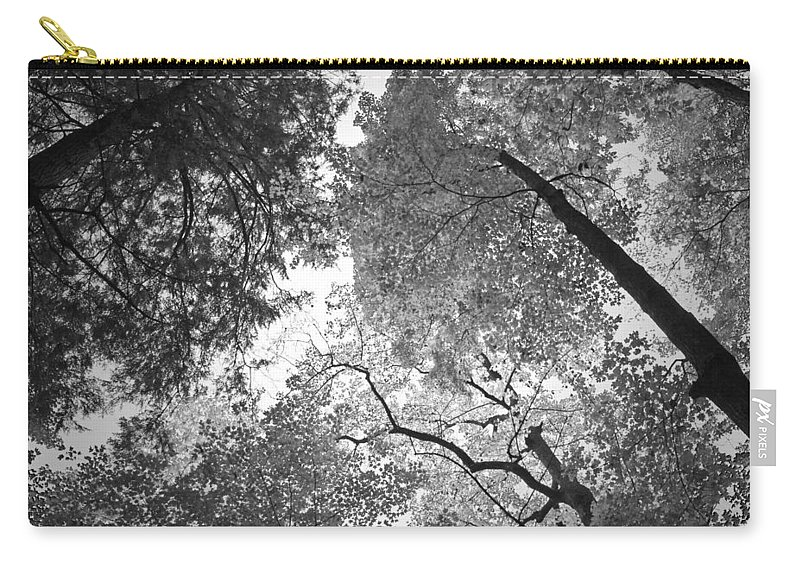 Leaves Carry-all Pouch featuring the photograph Sea Of Leaves by David Troxel