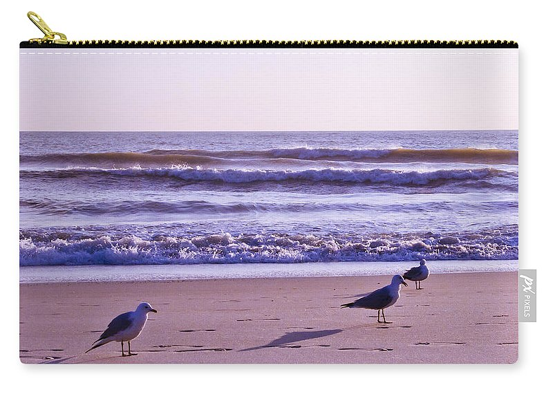 Florida Carry-all Pouch featuring the photograph Seagull Alliance by Roger Wedegis