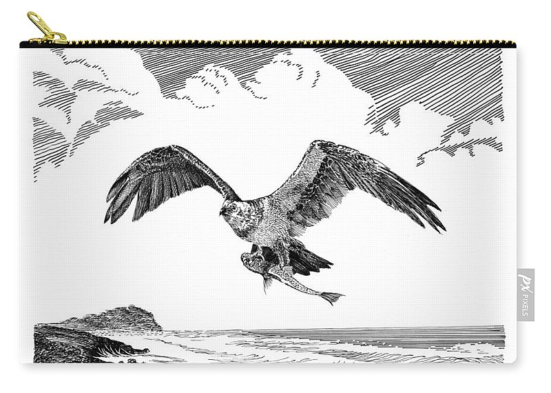 Framed Pen & Ink Art Prints Of The Osprey (pandion Haliaetus) Carry-all Pouch featuring the drawing Seahawk Dinnertime by Jack Pumphrey