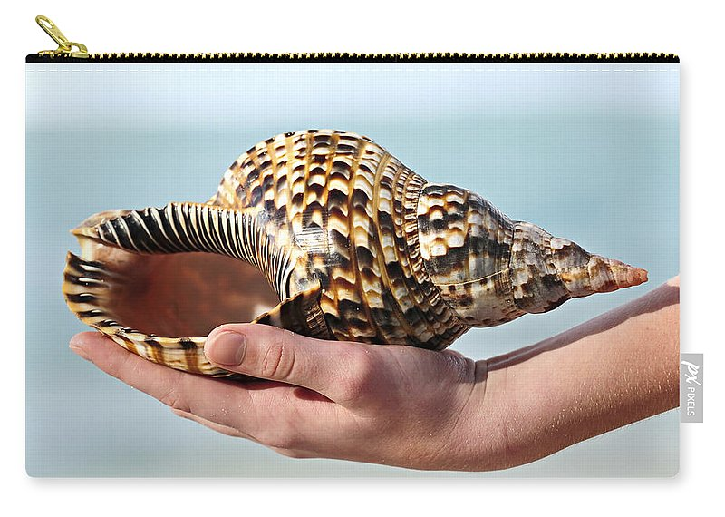 Seashell Carry-all Pouch featuring the photograph Seashell In Hand by Elena Elisseeva
