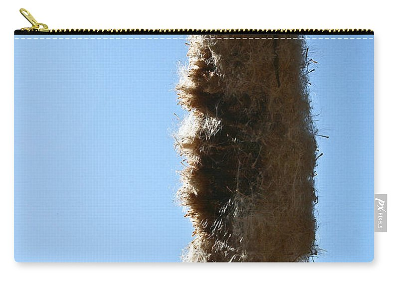 Cattail Carry-all Pouch featuring the photograph Seedy by Susan Herber