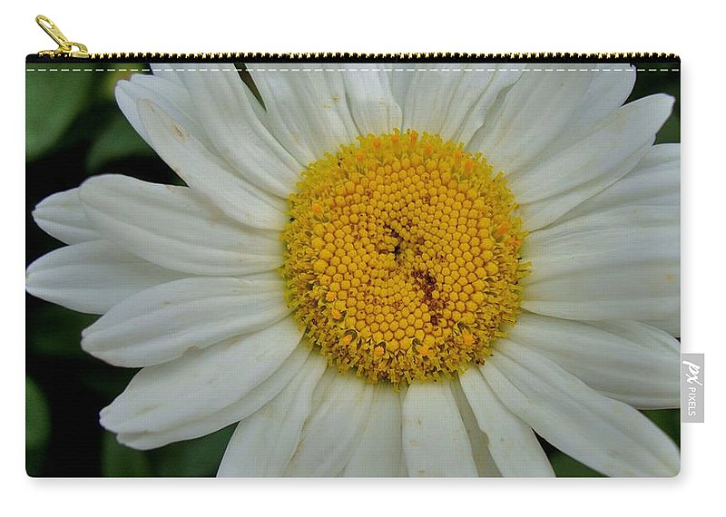 Bloom Carry-all Pouch featuring the photograph Seeing by Joseph Yarbrough