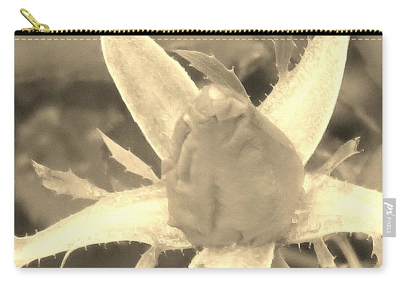 Rose Bud Carry-all Pouch featuring the photograph Sepia Rose Bud by Sonali Gangane