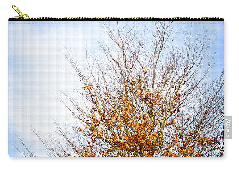 Fall Tree Carry-all Pouch featuring the photograph September Sky by Jan Bickerton