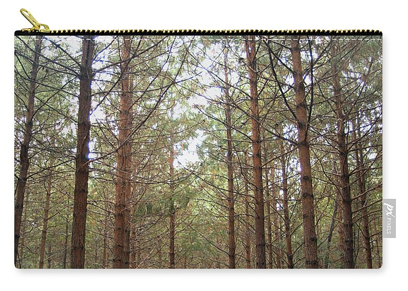 Pine Carry-all Pouch featuring the photograph Serene Forest by Tracey Beer