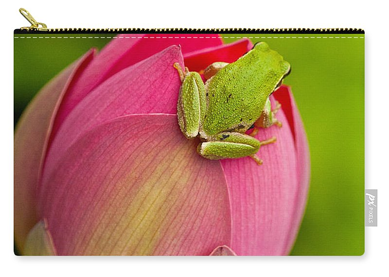 Amphibians Carry-all Pouch featuring the photograph Serene by Jean Noren