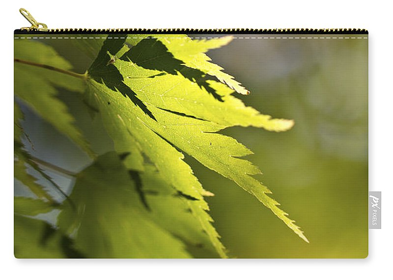 Green Carry-all Pouch featuring the photograph Shades Of Green And Gold. by Clare Bambers
