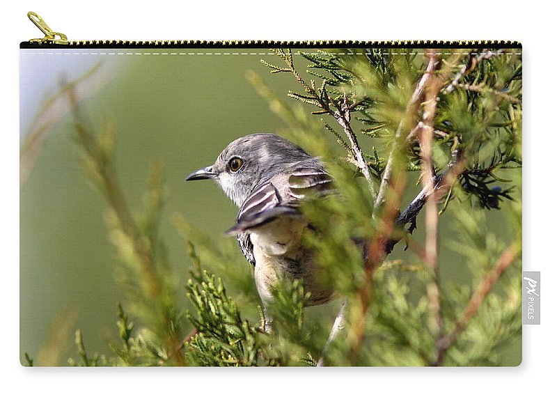 Carry-all Pouch featuring the photograph Shades Of Green by Travis Truelove