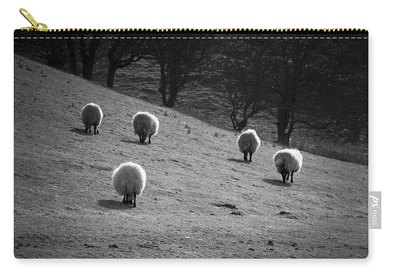 Animal Carry-all Pouch featuring the photograph Sheep by Svetlana Sewell
