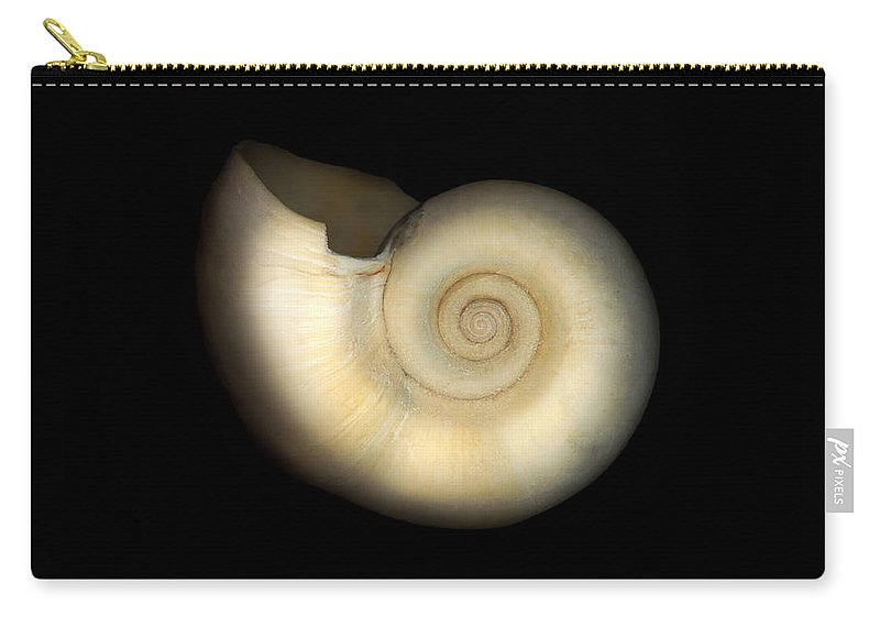 Nautilus Carry-all Pouch featuring the photograph Shell - Conchology - Nautilus by Mike Savad