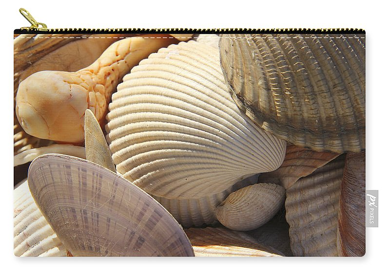 Sea Shells Carry-all Pouch featuring the photograph Shells 1 by Mike McGlothlen
