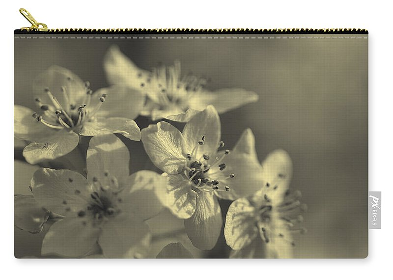 Calleryanna Carry-all Pouch featuring the photograph Shimmering Callery Pear Blossoms by Kathy Clark