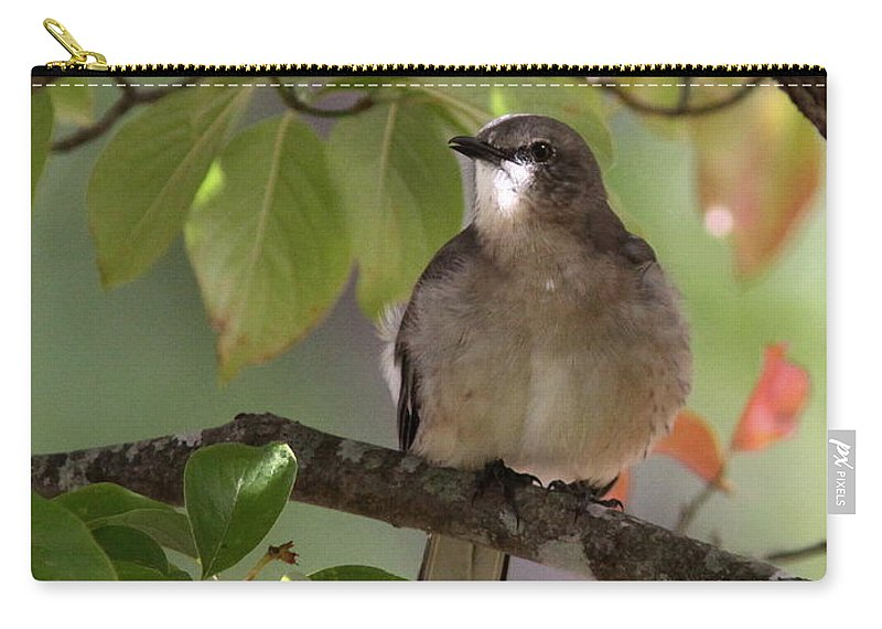 Nature Carry-all Pouch featuring the photograph Shining Eyes by Travis Truelove