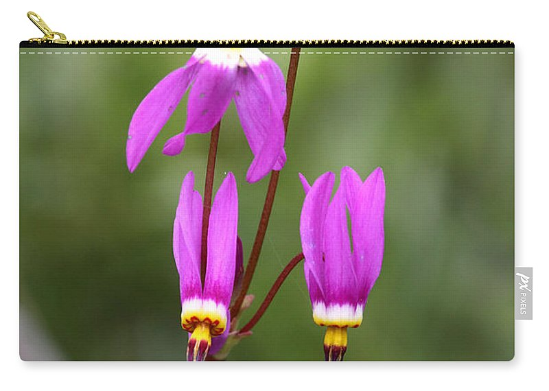 Doug Lloyd Carry-all Pouch featuring the photograph Shooting Stars by Doug Lloyd