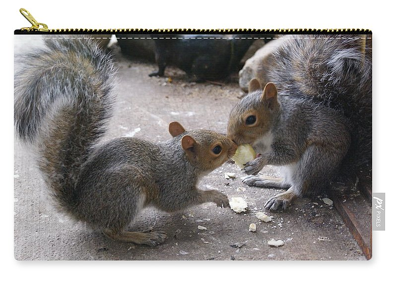 Squirrel Carry-all Pouch featuring the photograph Siblings by Ben Upham III