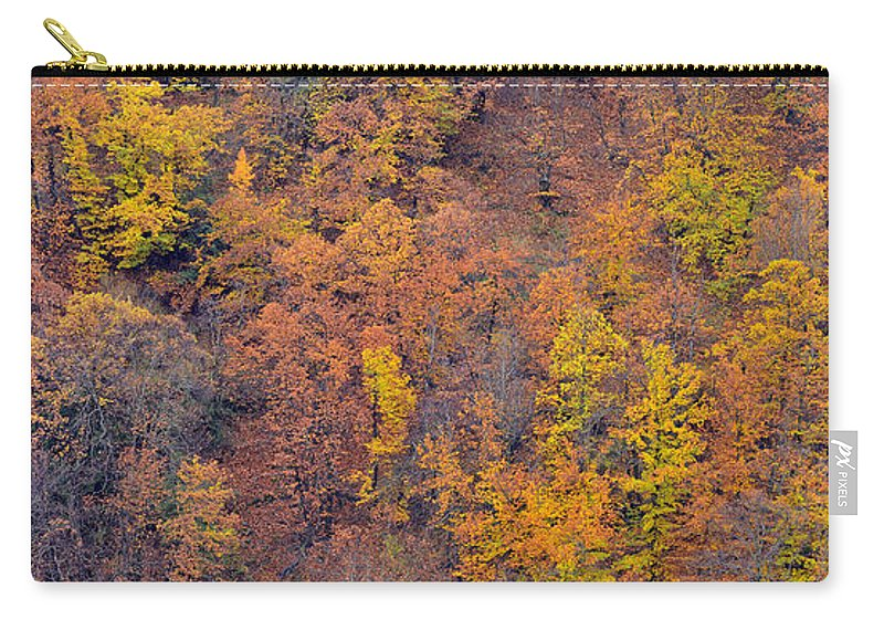 Trees Carry-all Pouch featuring the photograph Sierra Nevada National Park by Guido Montanes Castillo