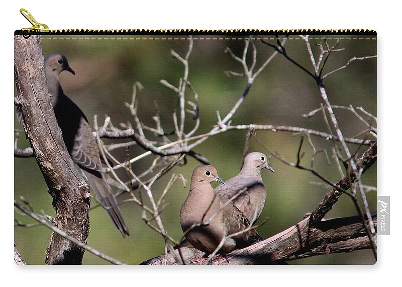 Nature Carry-all Pouch featuring the photograph Siesta Time - Mourning Dove by Travis Truelove