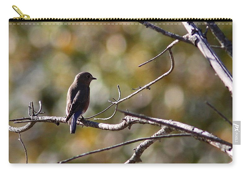 Nature Carry-all Pouch featuring the photograph Silhouette by Travis Truelove
