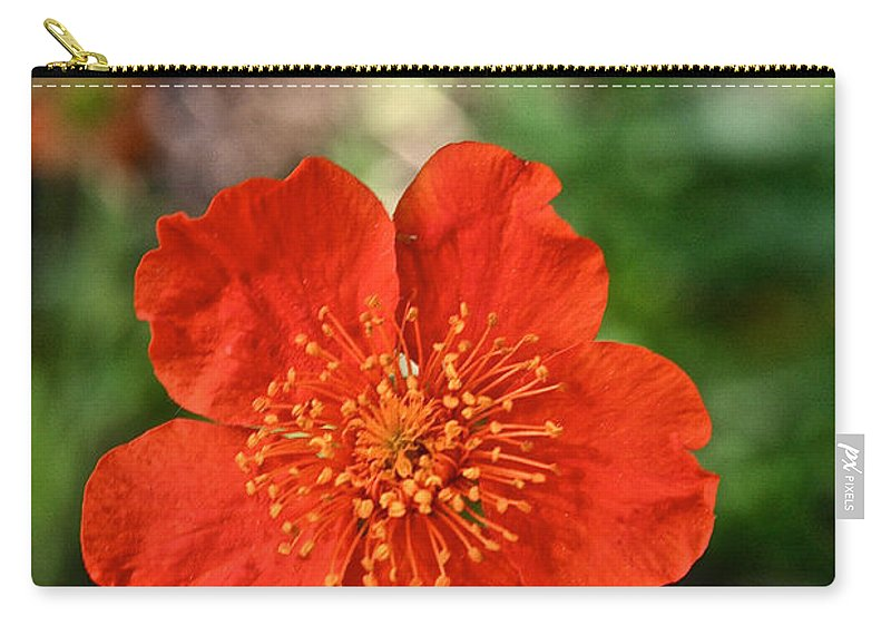 Plant Carry-all Pouch featuring the photograph Simple Red by Susan Herber