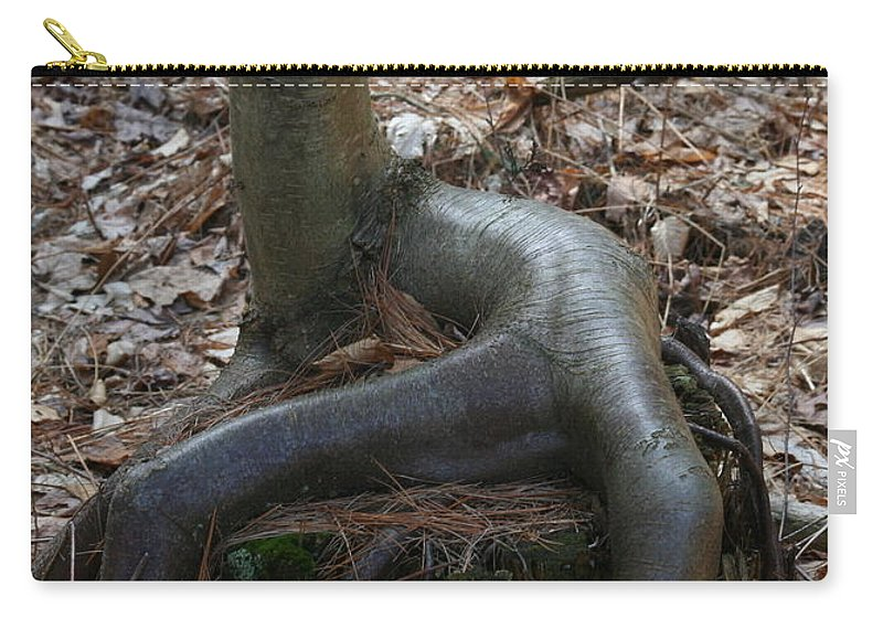 Tree Carry-all Pouch featuring the photograph Sit Down by Neal Eslinger
