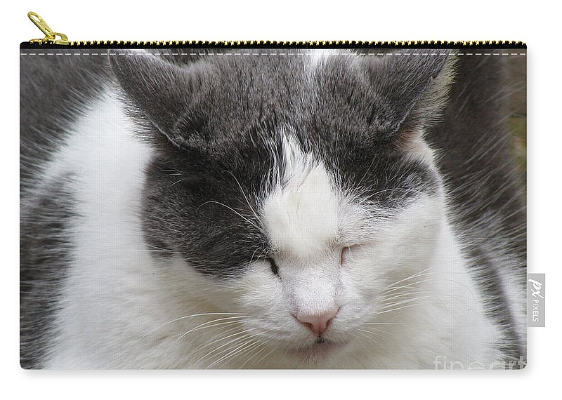 Animal Carry-all Pouch featuring the photograph Sleeping by Donna Brown