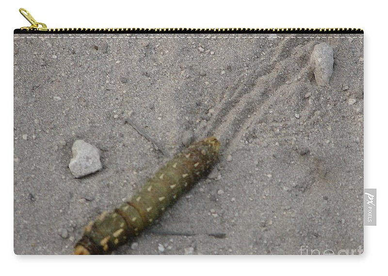Worm Carry-all Pouch featuring the photograph Slick by Priscilla Richardson