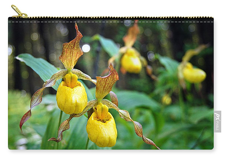 Wildflower Carry-all Pouch featuring the photograph Slippers For The Lady by Bill Pevlor
