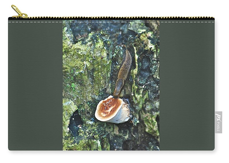 Alge Carry-all Pouch featuring the photograph Slug 7044 1674 2 by Michael Peychich