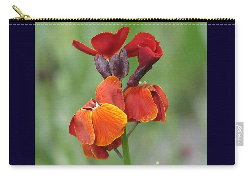 Botanical Carry-all Pouch featuring the photograph Smooth And Silky by Chris Anderson