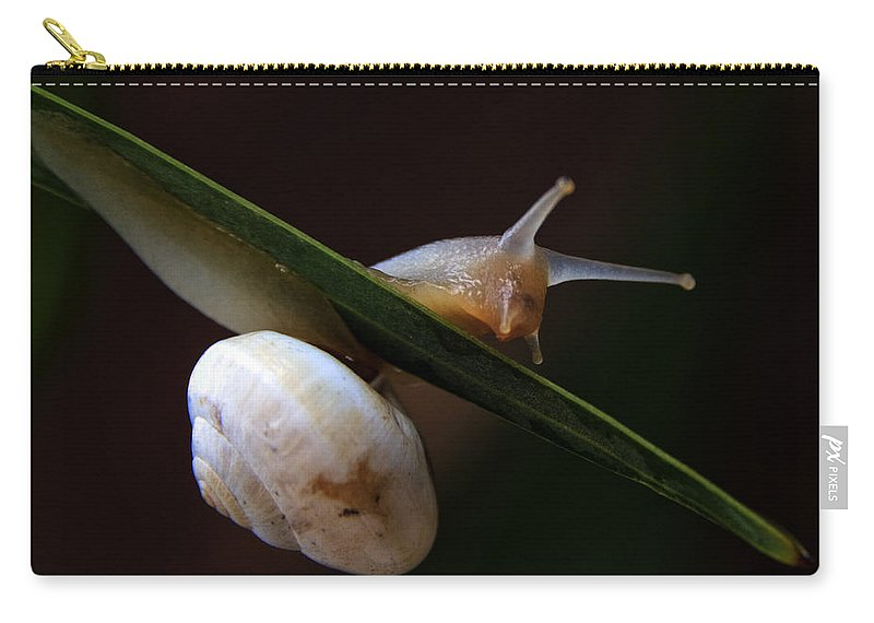 Animal Carry-all Pouch featuring the photograph Snail by Stelios Kleanthous